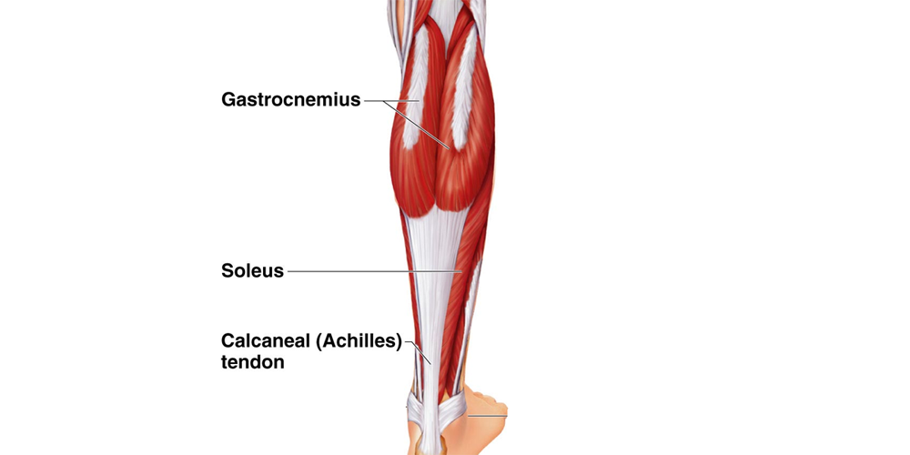 Calf and Lower Limb Injuries and Treatment (Including Self Treatment)