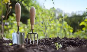 Gardening – Is it Exercise?