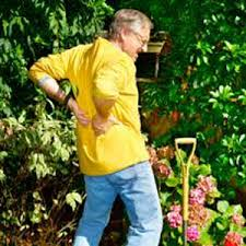 Bad back from Gardening
